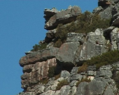 stone faces Table Mountain family